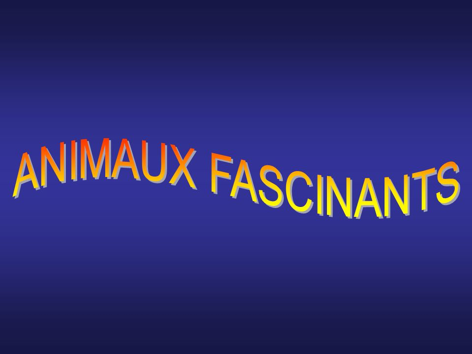 ANIMAUX FASCINANTS
