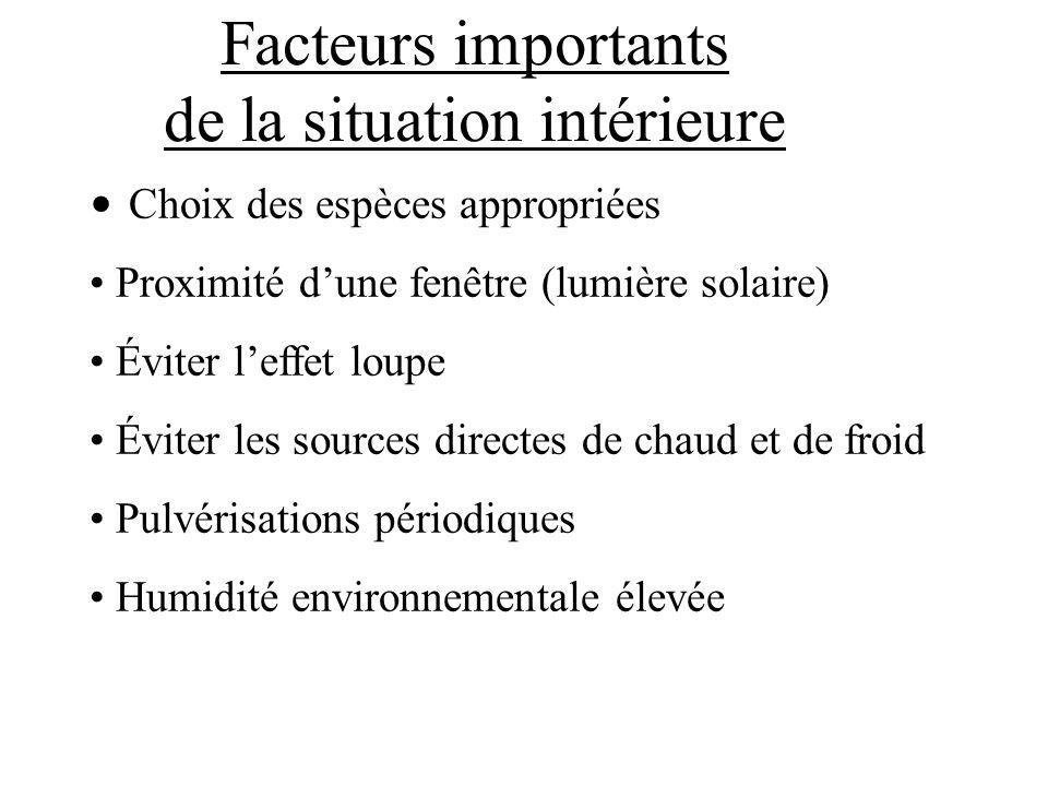 Facteurs importants de la situation intérieure