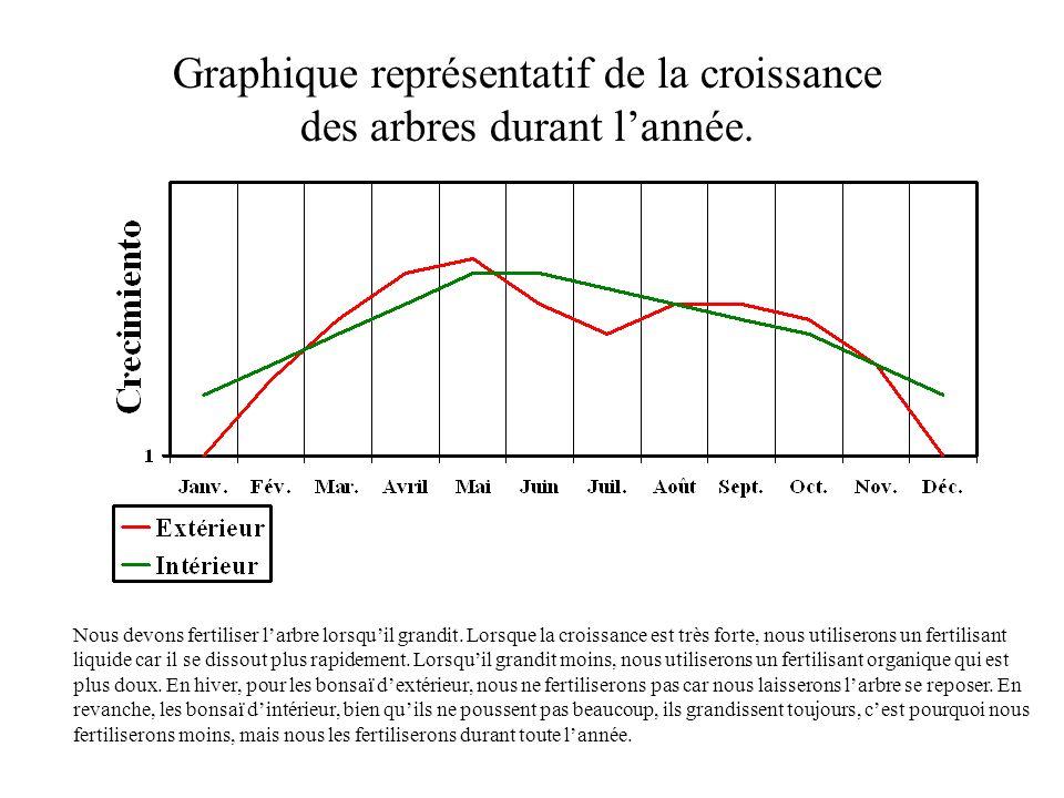 Graphique représentatif de la croissance des arbres durant l'année.