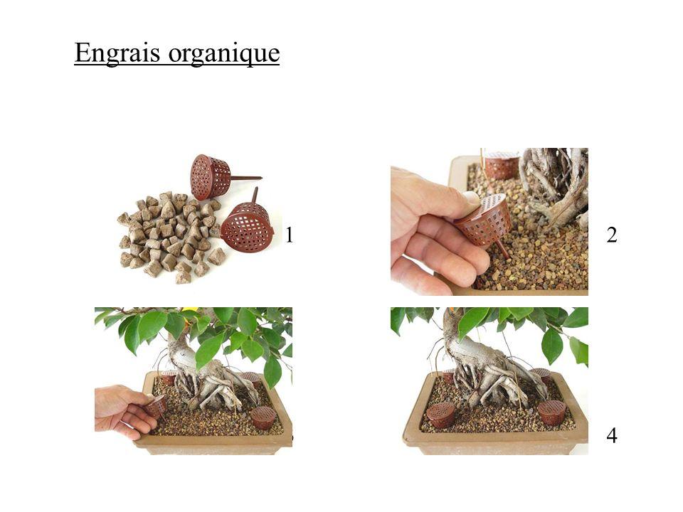 Engrais organique 1 2 3 4
