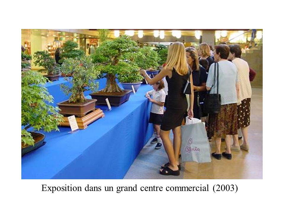 Exposition dans un grand centre commercial (2003)