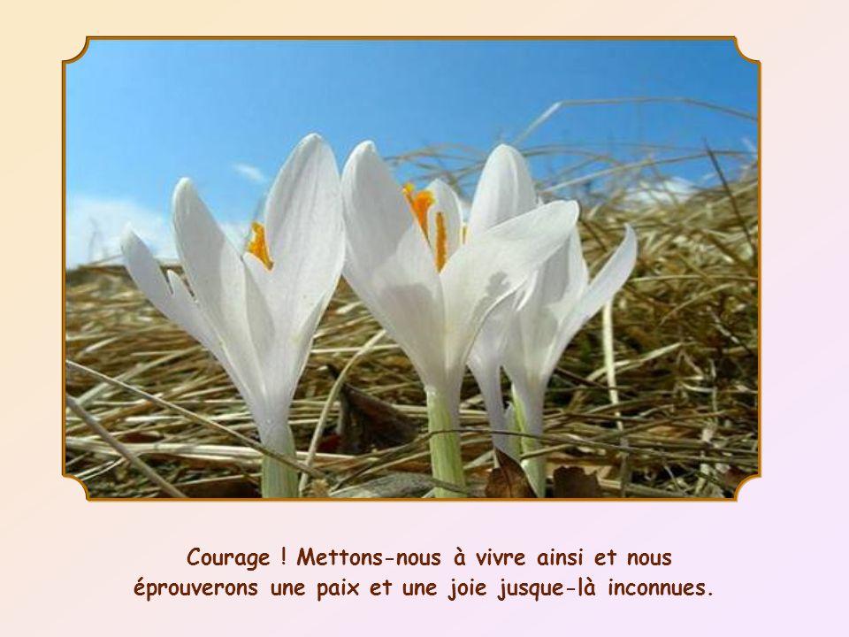 Courage ! Mettons-nous à vivre ainsi et nous éprouverons une paix et une joie jusque-là inconnues.
