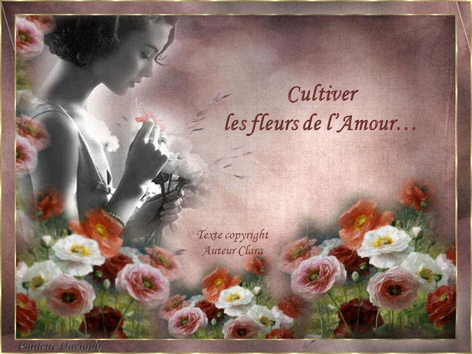 Cultiver les fleurs de l'Amour…