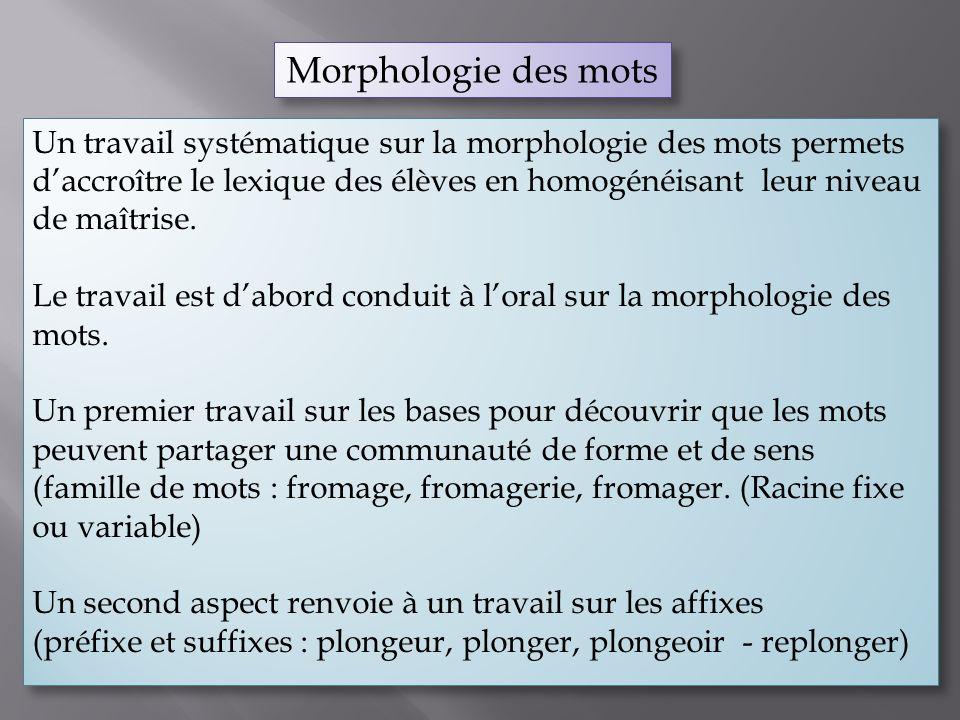 Morphologie des mots