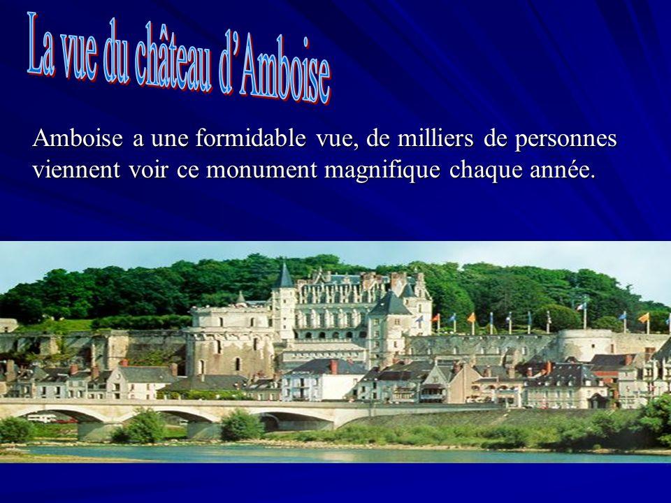 La vue du château d'Amboise