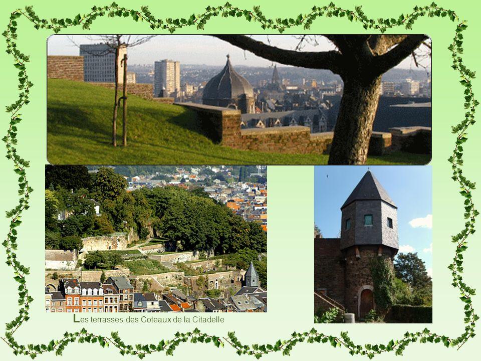 Les terrasses des Coteaux de la Citadelle
