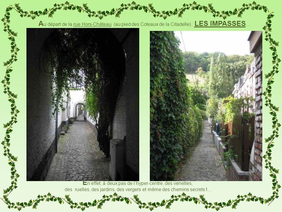 Au départ de la rue Hors-Château (au pied des Coteaux de la Citadelle) : LES IMPASSES…