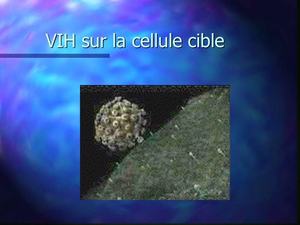 VIH sur la cellule cible
