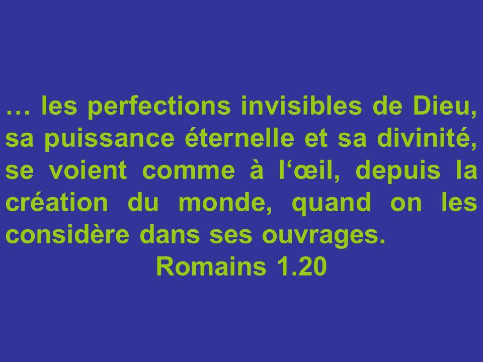 … les perfections invisibles de Dieu, sa puissance éternelle et sa divinité, se voient comme à l'œil, depuis la création du monde, quand on les considère dans ses ouvrages.