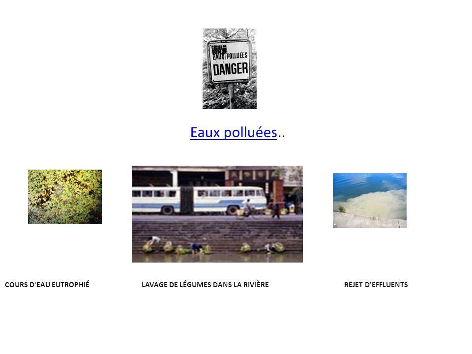 Eaux polluées..