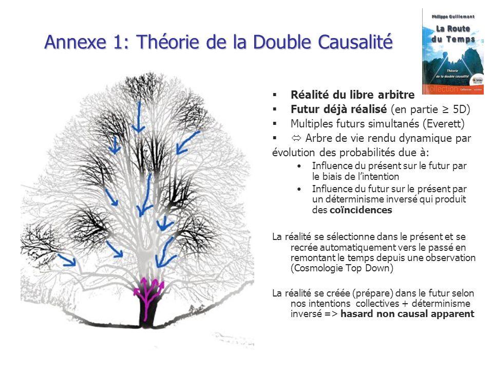 Annexe 1: Théorie de la Double Causalité