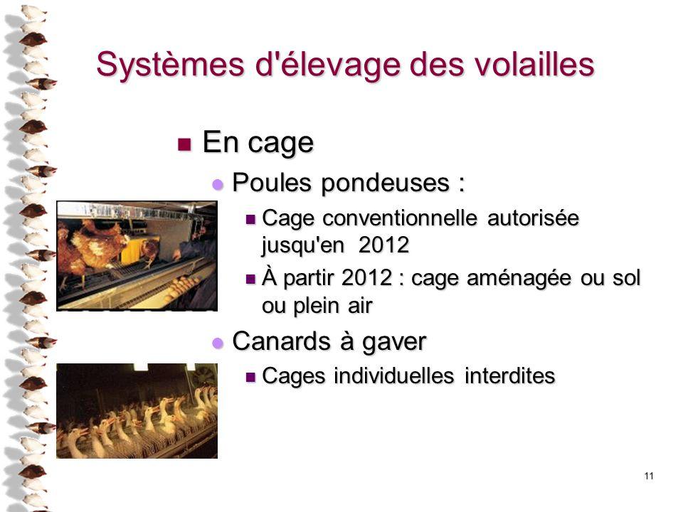 Systèmes d élevage des volailles