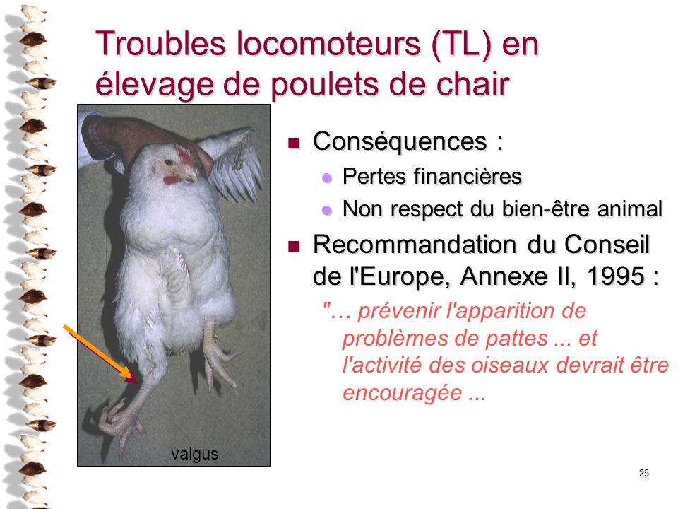 Troubles locomoteurs (TL) en élevage de poulets de chair