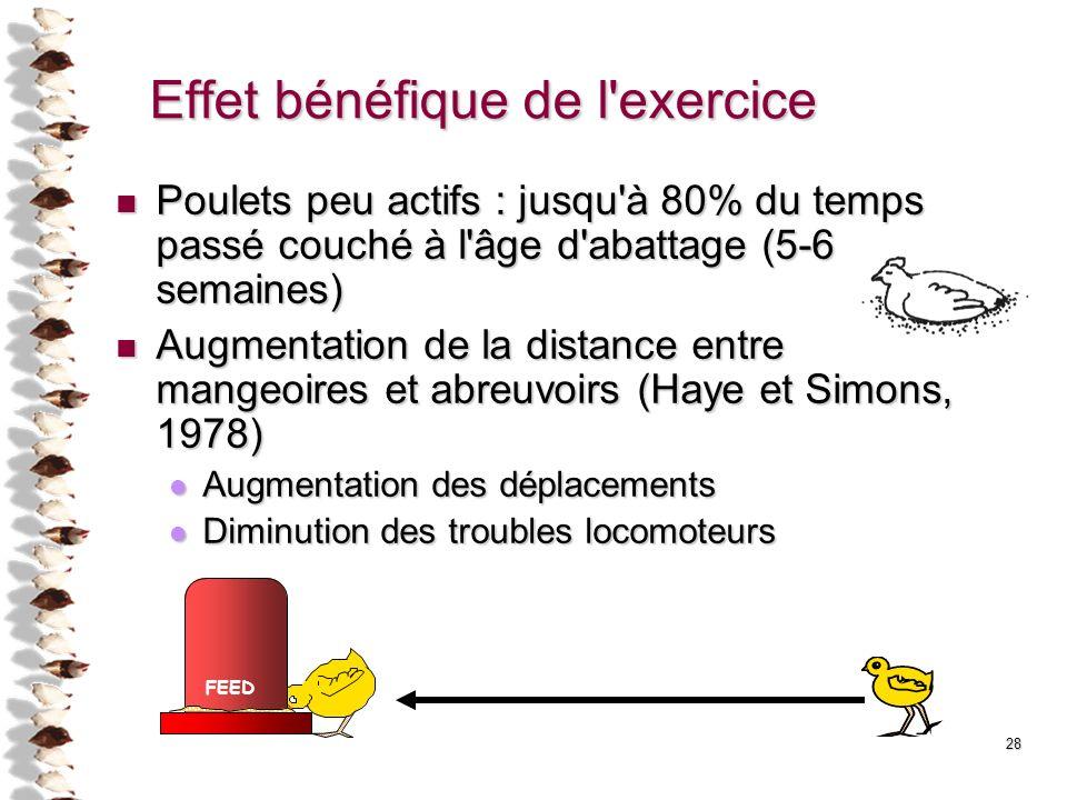 Effet bénéfique de l exercice