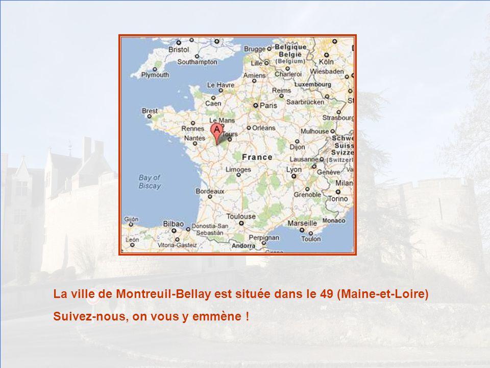 La ville de Montreuil-Bellay est située dans le 49 (Maine-et-Loire)