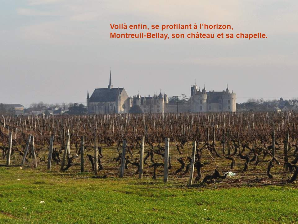 Voilà enfin, se profilant à l'horizon, Montreuil-Bellay, son château et sa chapelle.