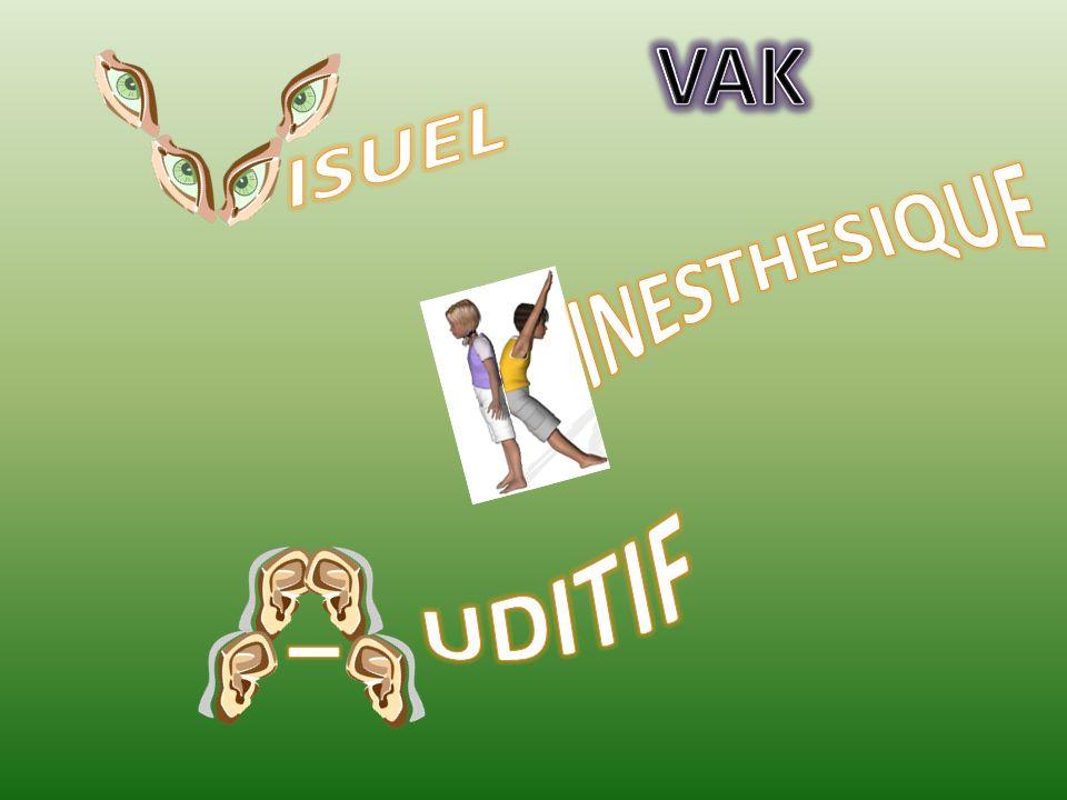 VAK ISUEL INESTHESIQUE UDITIF I