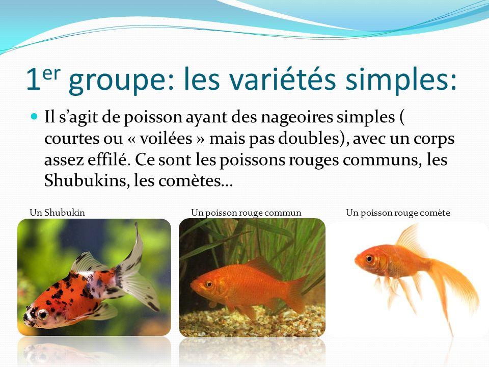 1er groupe: les variétés simples: