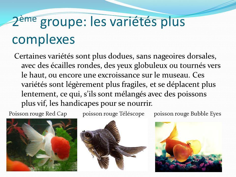 2ème groupe: les variétés plus complexes