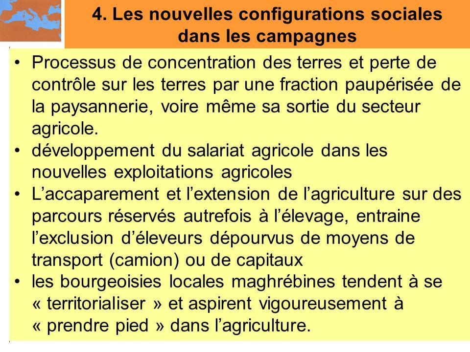 4. Les nouvelles configurations sociales dans les campagnes