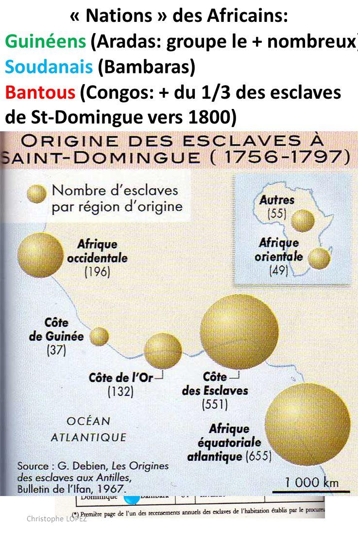 « Nations » des Africains: Les créoles représentent