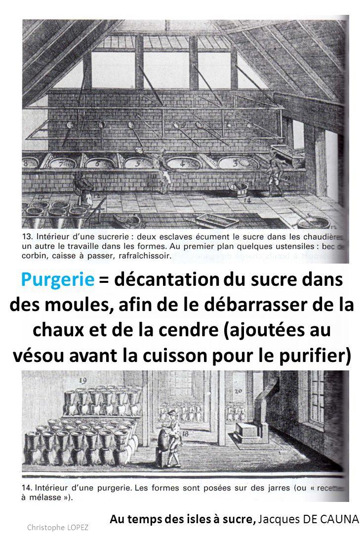 Purgerie = décantation du sucre dans des moules, afin de le débarrasser de la chaux et de la cendre (ajoutées au vésou avant la cuisson pour le purifier)