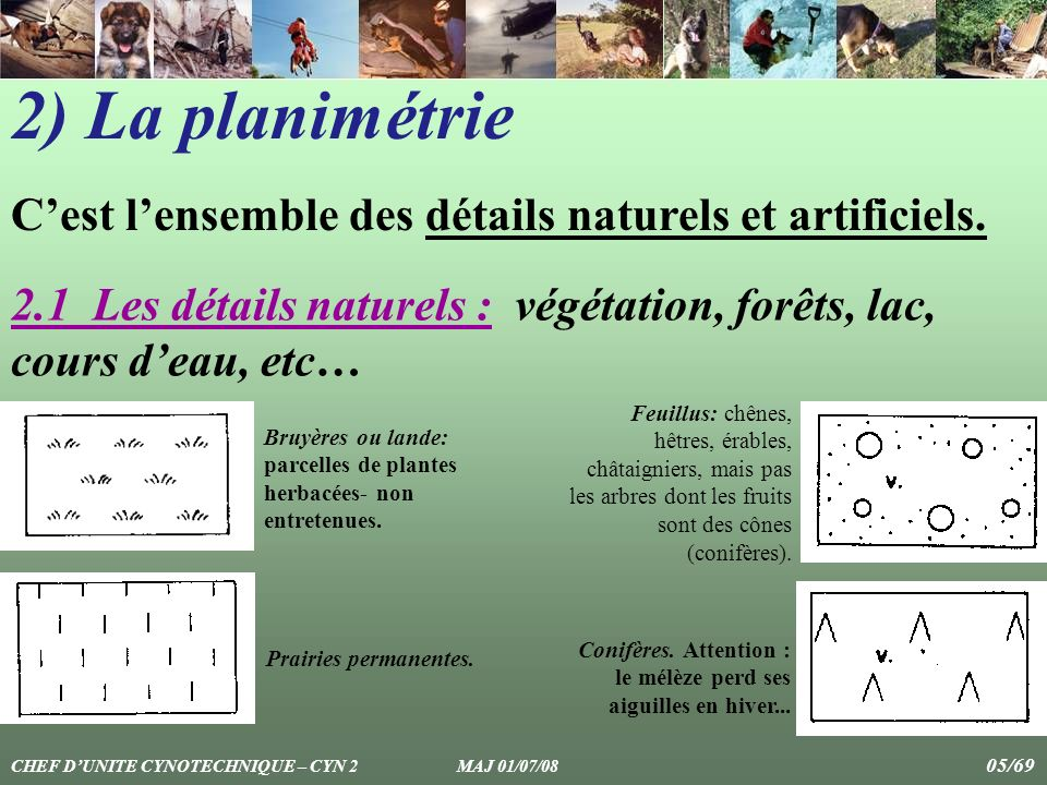 2) La planimétrie C'est l'ensemble des détails naturels et artificiels. 2.1 Les détails naturels : végétation, forêts, lac, cours d'eau, etc…