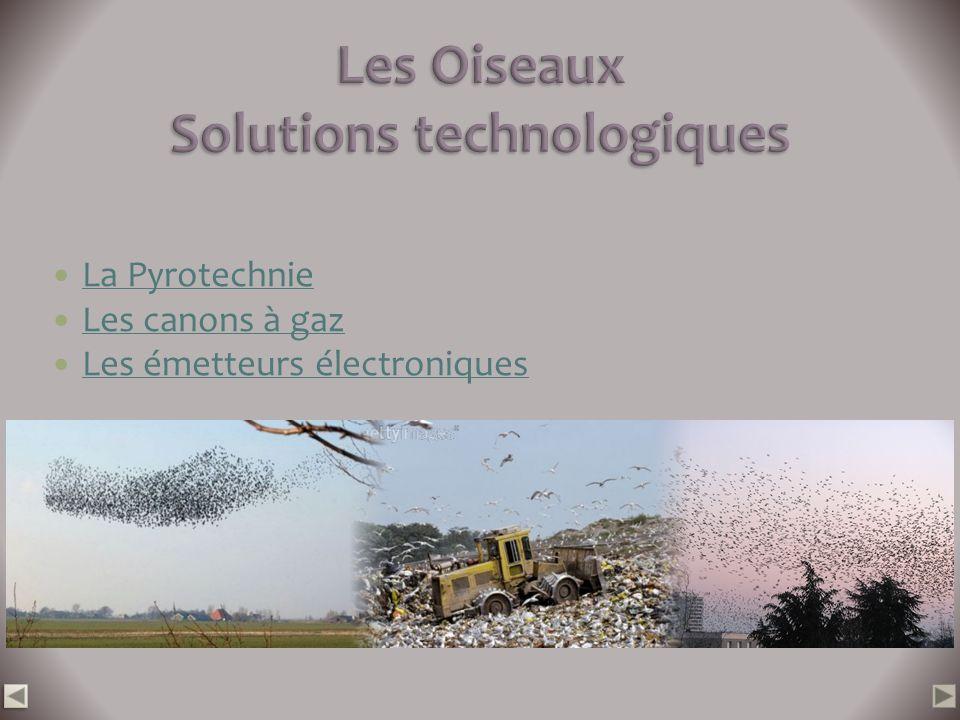Les Oiseaux Solutions technologiques