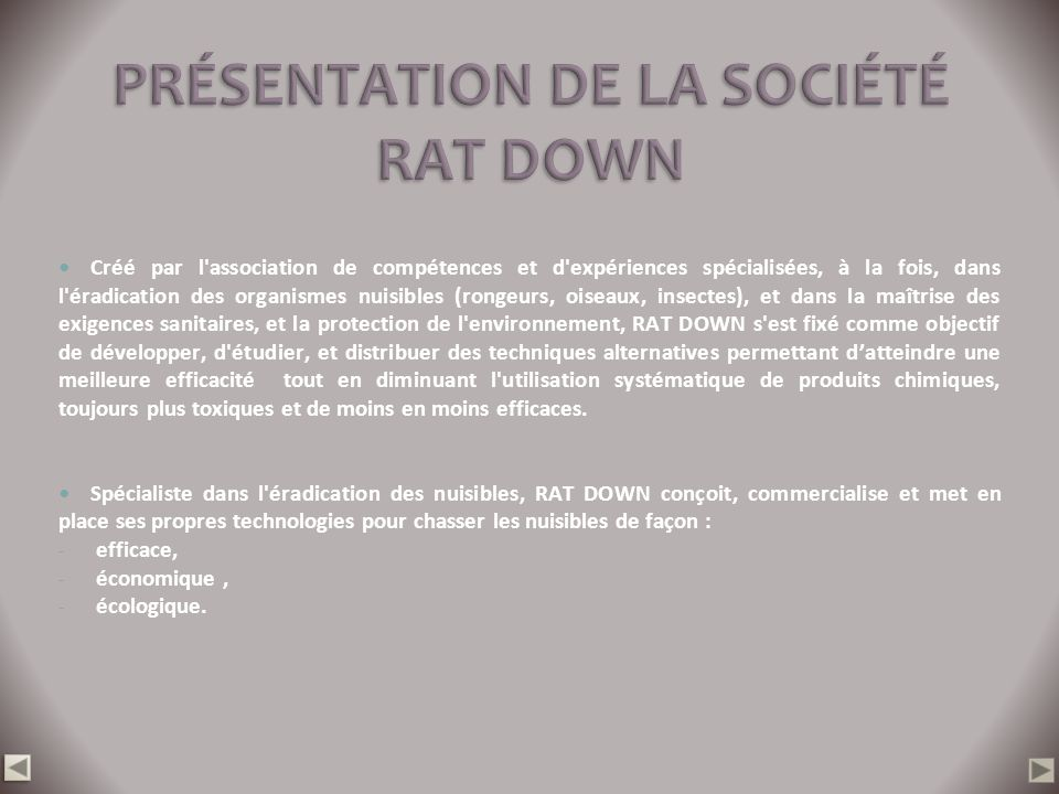 PRÉSENTATION DE LA SOCIÉTÉ RAT DOWN