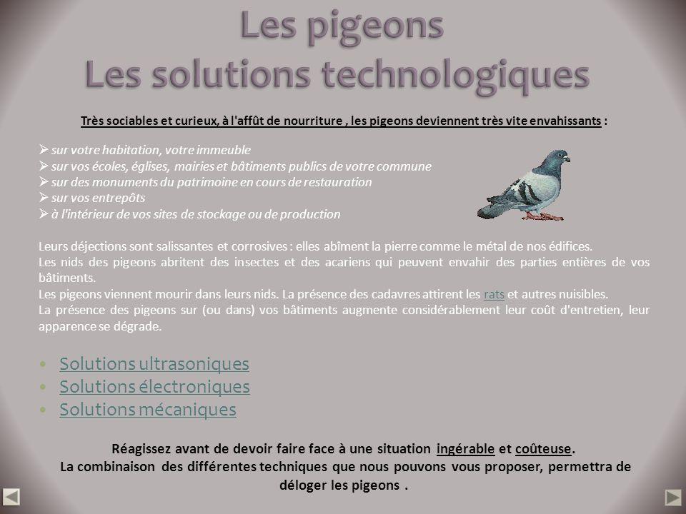 Les pigeons Les solutions technologiques