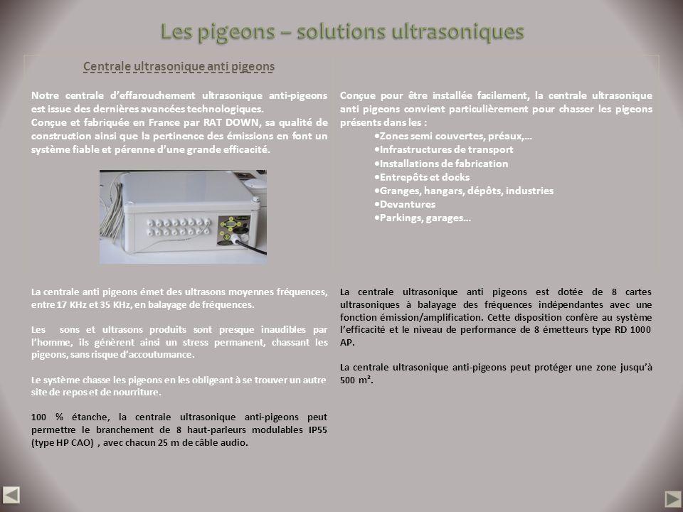 Les pigeons – solutions ultrasoniques