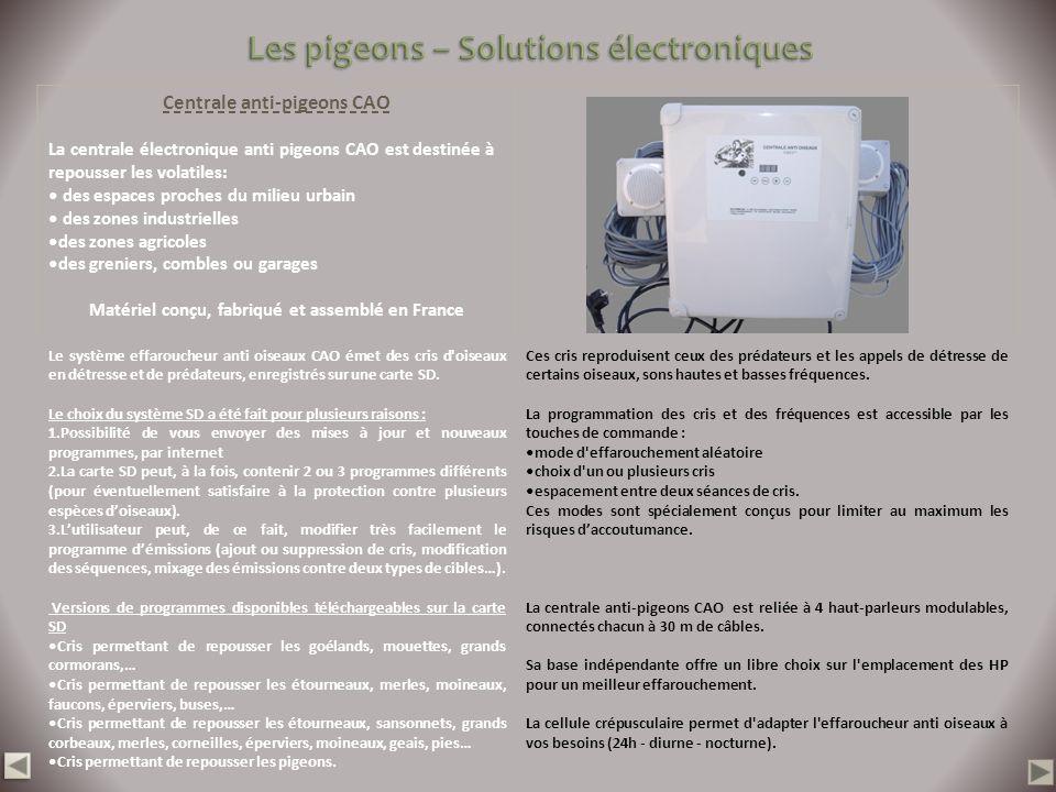 Les pigeons – Solutions électroniques