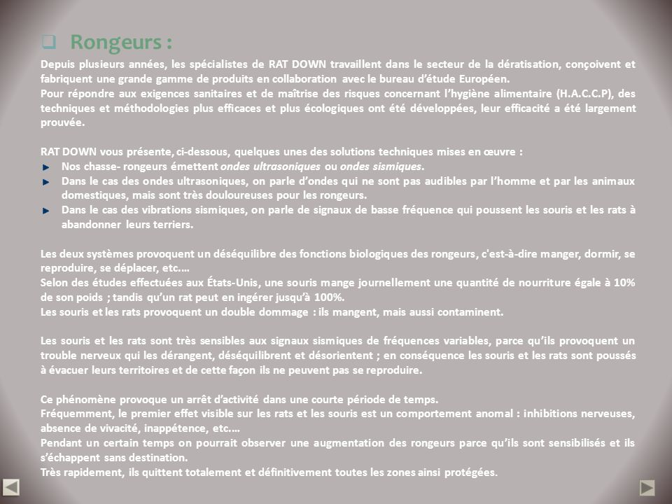 Rongeurs :
