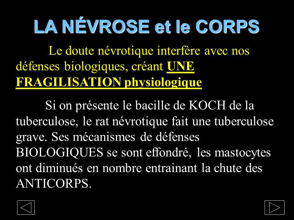LA NÉVROSE et le CORPS Le doute névrotique interfère avec nos défenses biologiques, créant UNE FRAGILISATION physiologique.