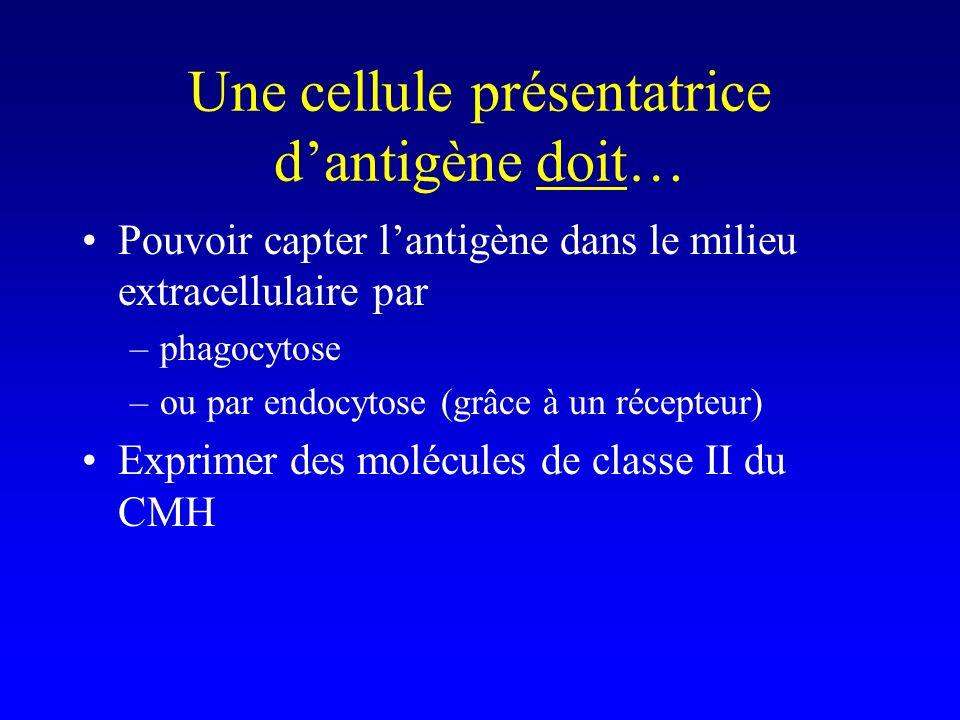 Une cellule présentatrice d'antigène doit…