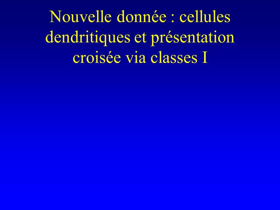 Nouvelle donnée : cellules dendritiques et présentation croisée via classes I
