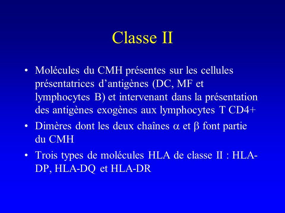 Classe II