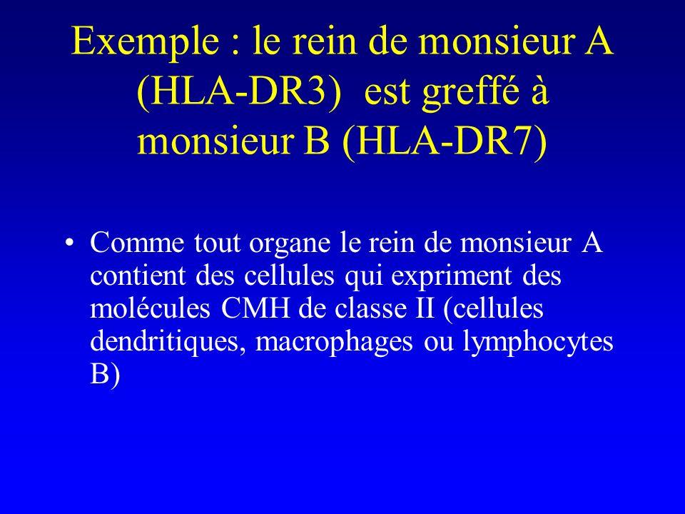 Exemple : le rein de monsieur A (HLA-DR3) est greffé à monsieur B (HLA-DR7)