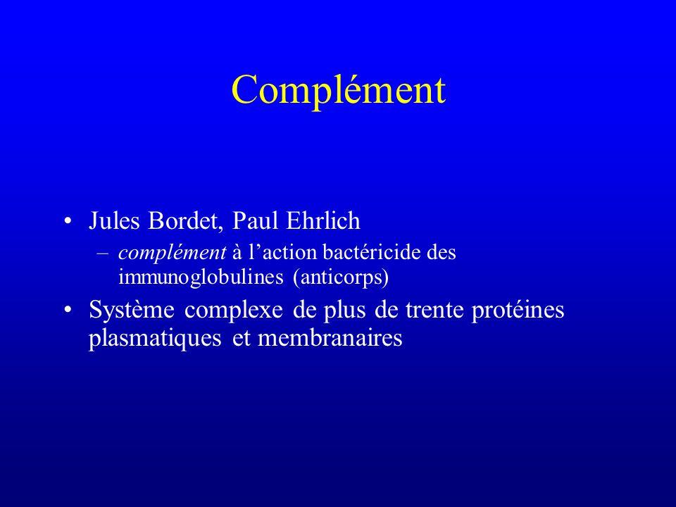Complément Jules Bordet, Paul Ehrlich