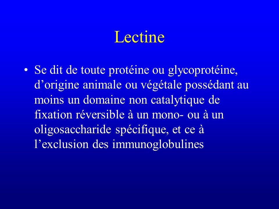 Lectine