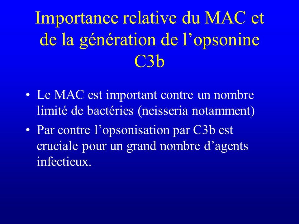 Importance relative du MAC et de la génération de l'opsonine C3b