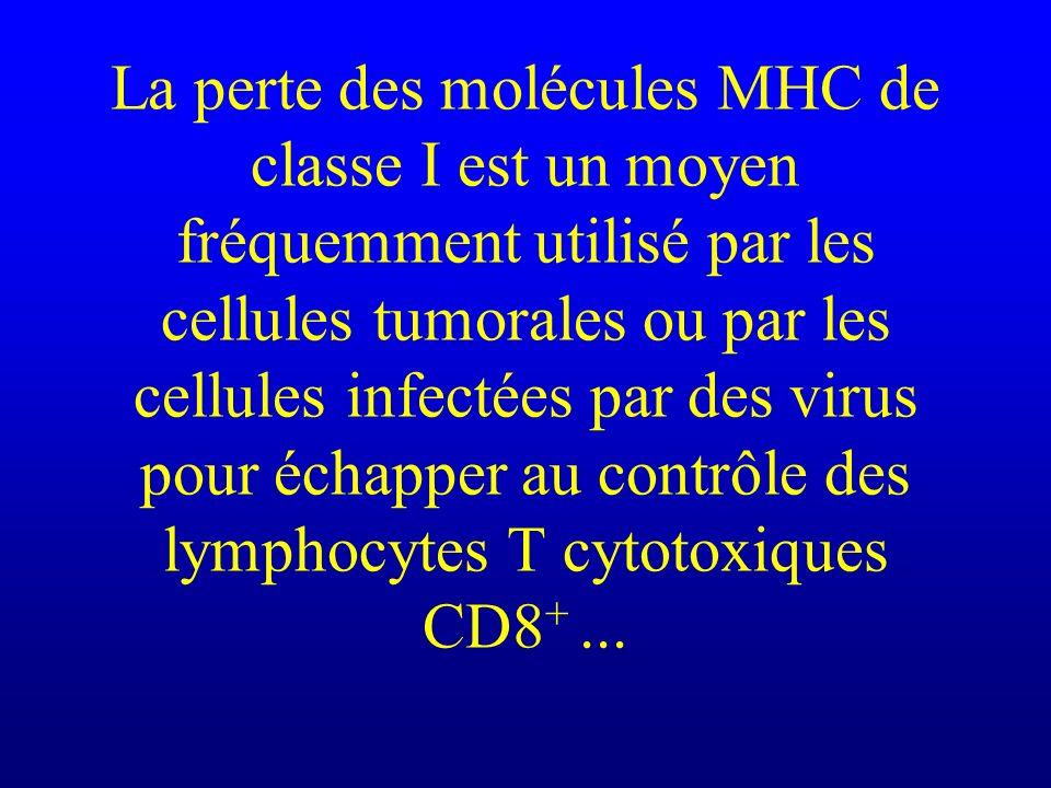 La perte des molécules MHC de classe I est un moyen fréquemment utilisé par les cellules tumorales ou par les cellules infectées par des virus pour échapper au contrôle des lymphocytes T cytotoxiques CD8+ ...