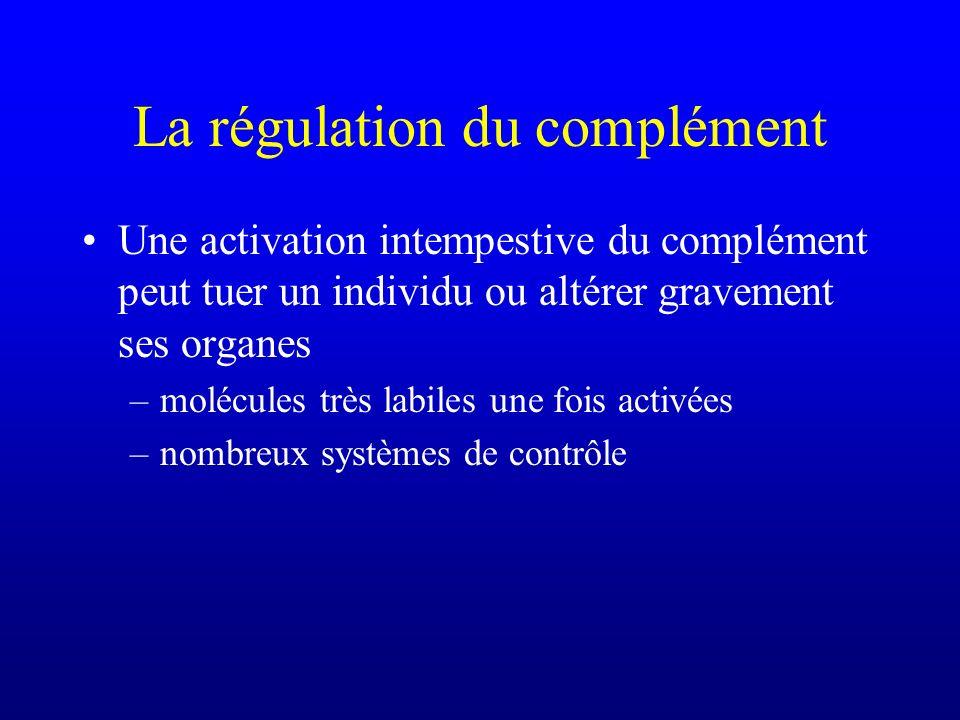 La régulation du complément