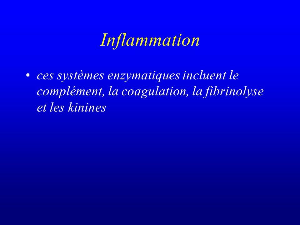 Inflammation ces systèmes enzymatiques incluent le complément, la coagulation, la fibrinolyse et les kinines.