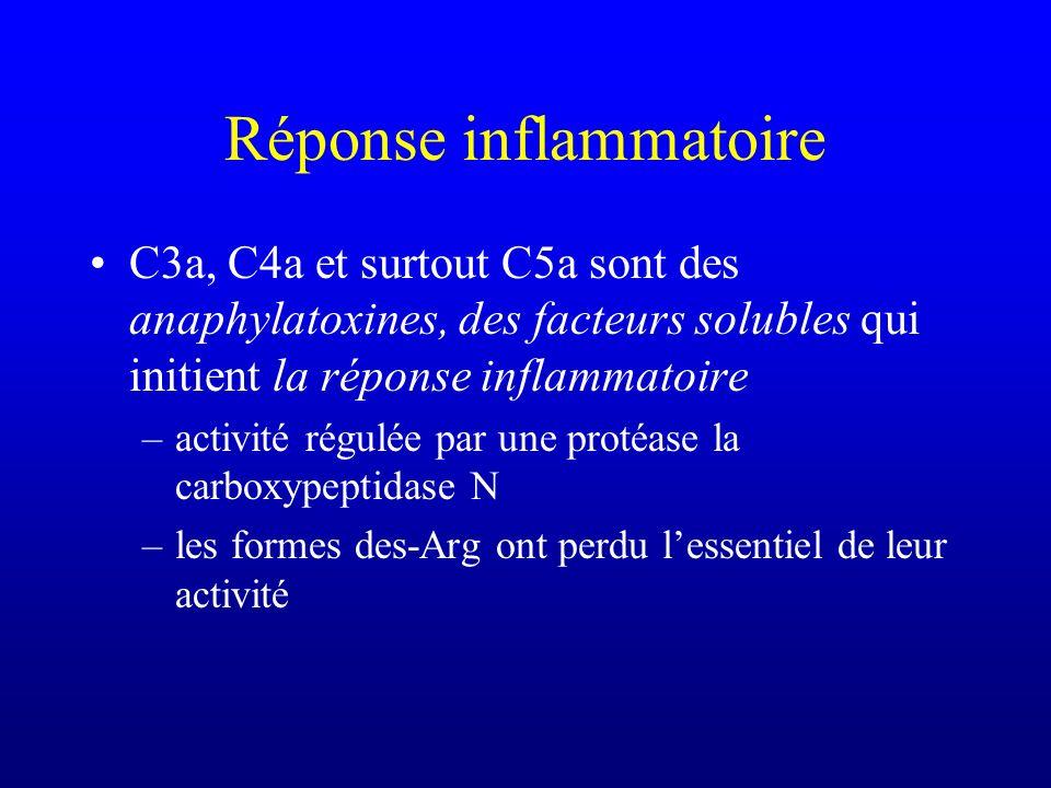 Réponse inflammatoire