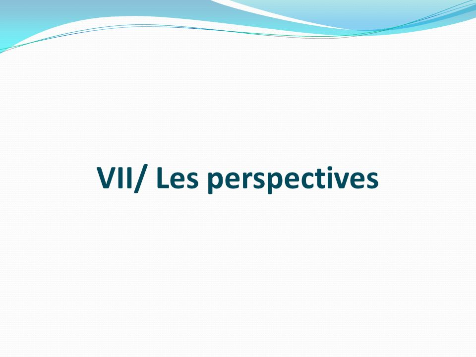 VII/ Les perspectives