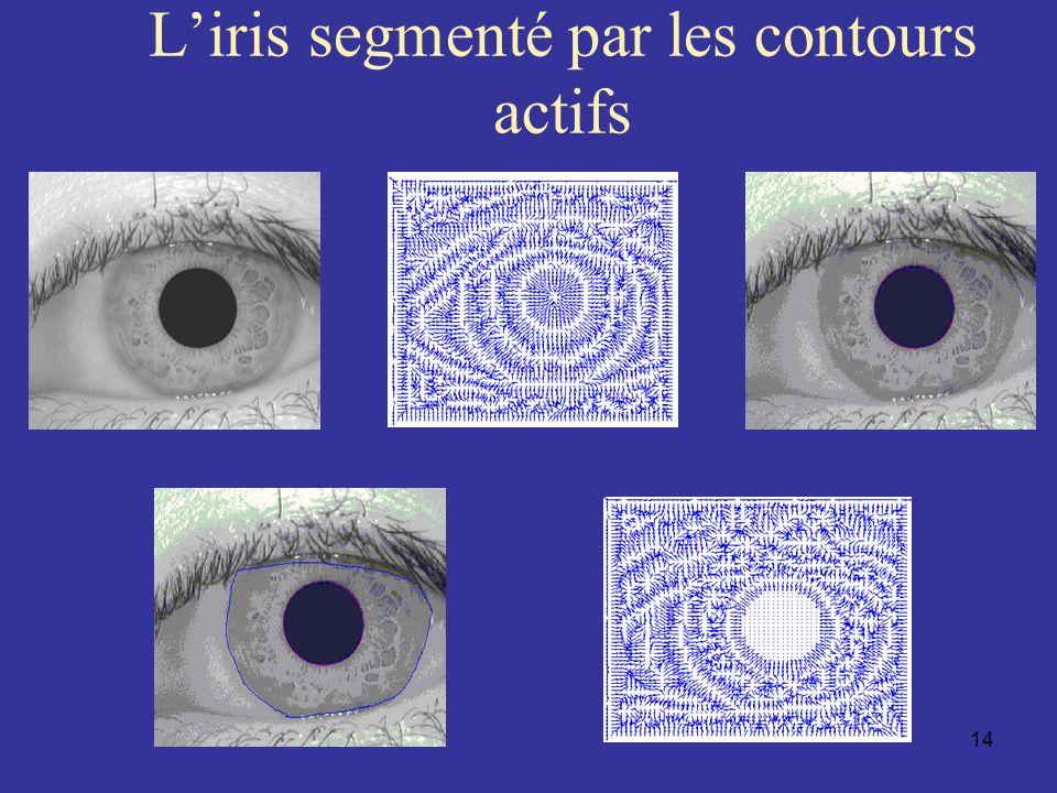 L'iris segmenté par les contours actifs