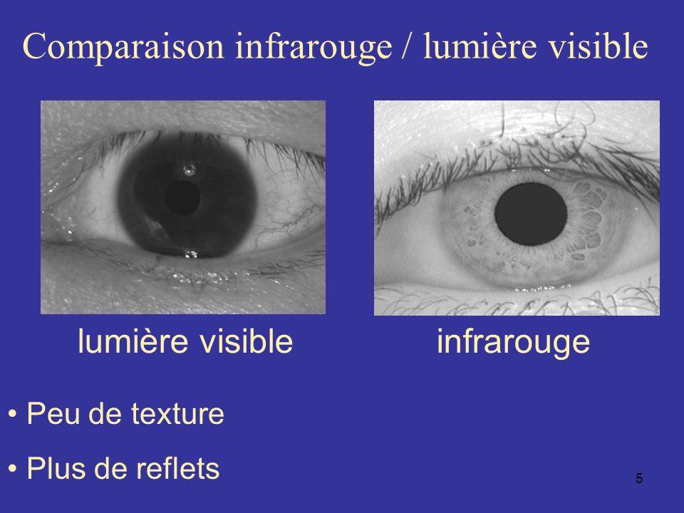 Comparaison infrarouge / lumière visible