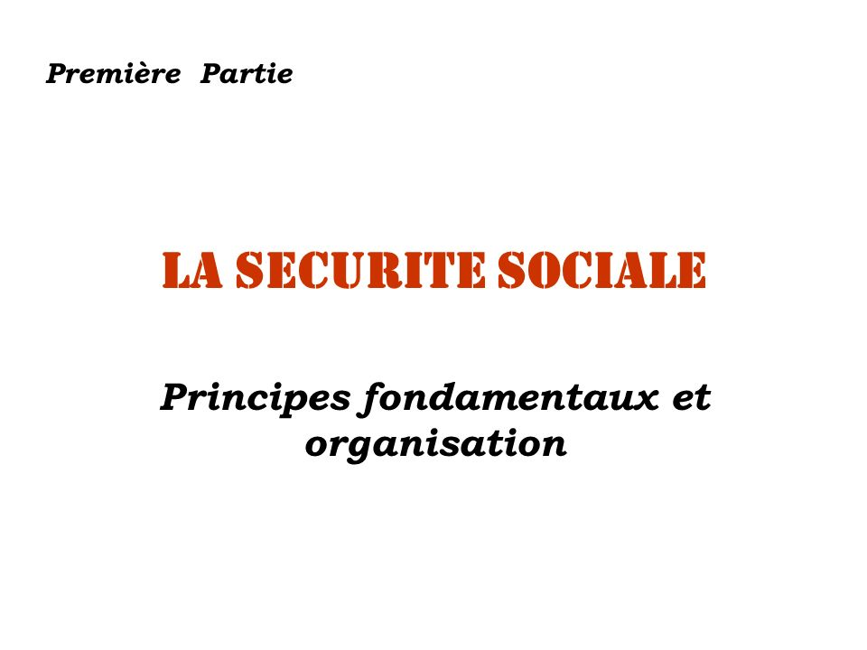 Principes fondamentaux et organisation