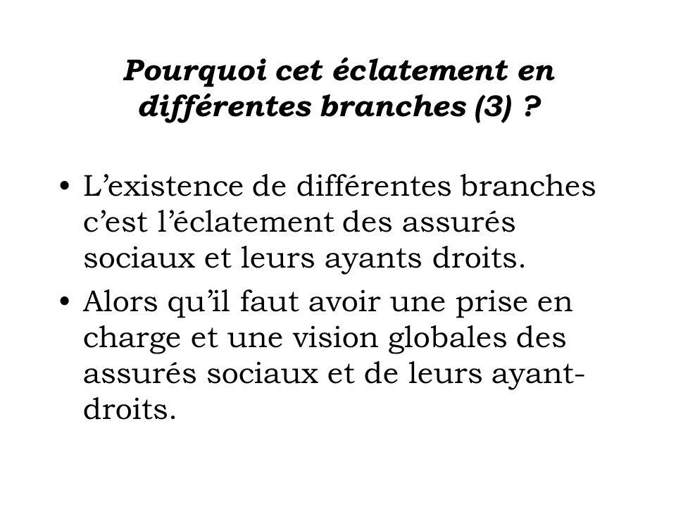 Pourquoi cet éclatement en différentes branches (3)